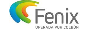 logo fenix